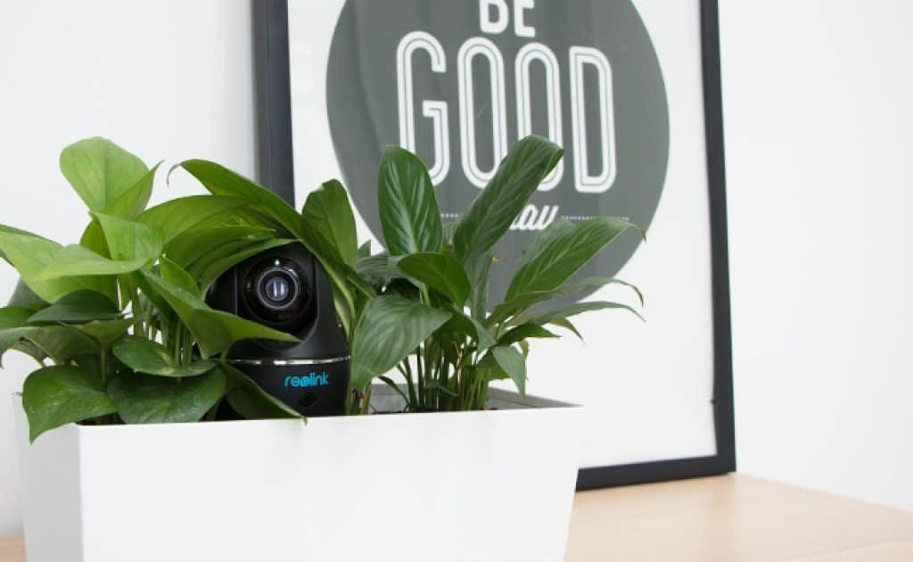 hide camera inside a plant pot