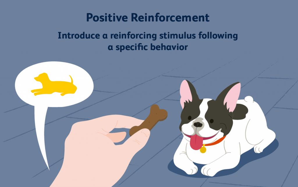 reinforce positive behavior