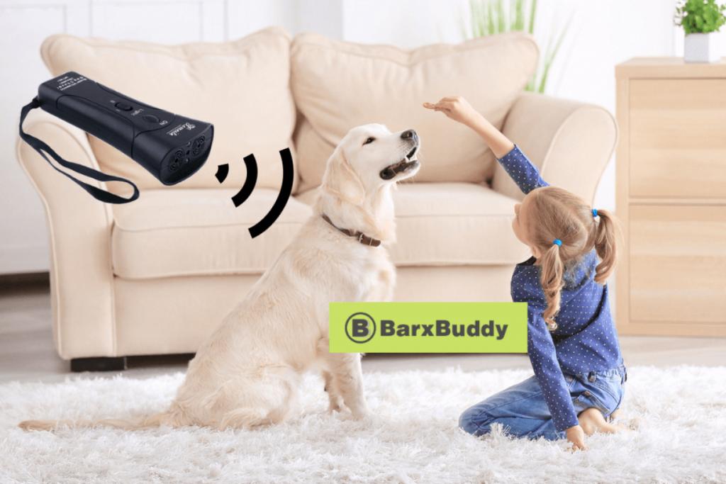 train your dog with BarxBuddy